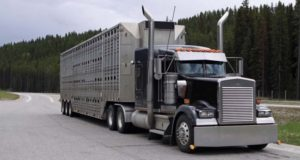 What Is The Need To Use Auto Truck Transport?